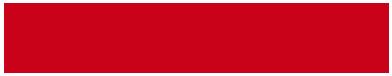 Nelson logo