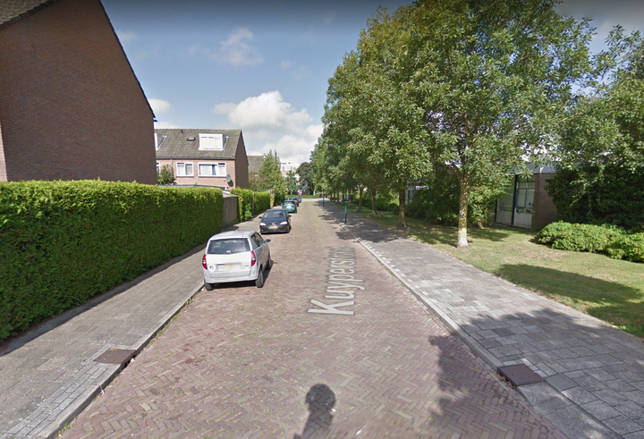Normal hond mishandeld in maarssen