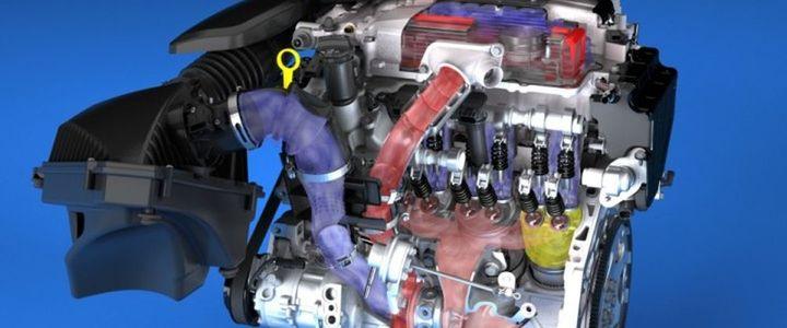 Normal motor