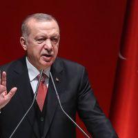 Thumbnail erdogan
