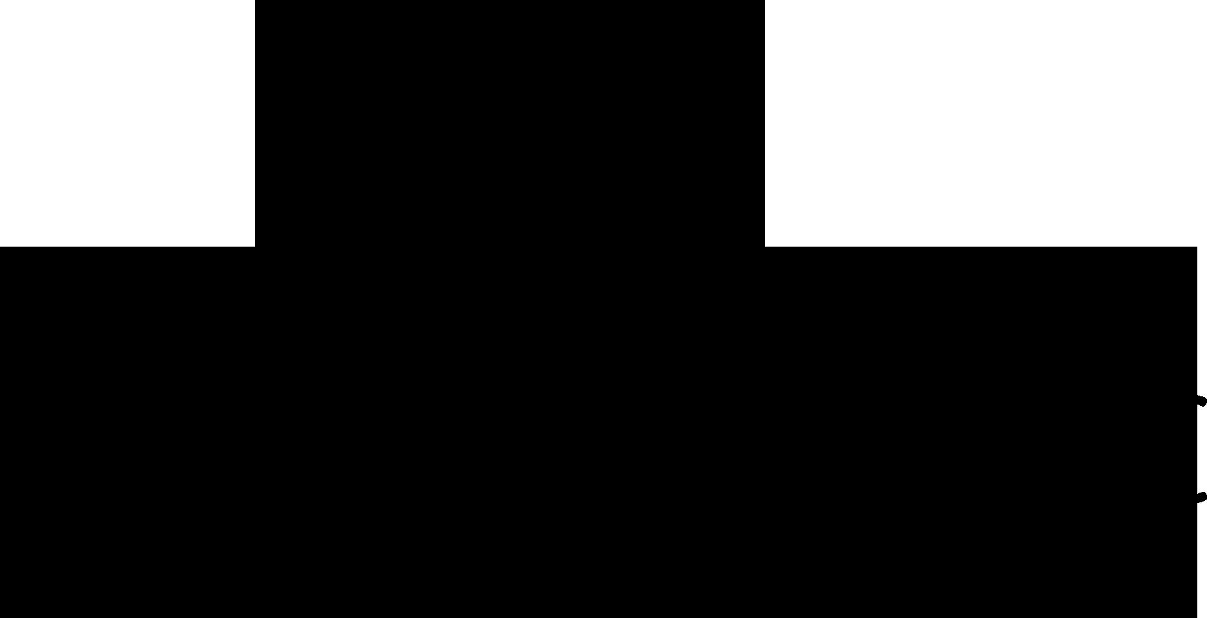 Logo zwart elislaserclinickopie