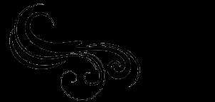 Cropped logo groot