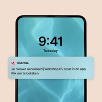 Thumbnail pay later with klarna visual 3 5 app notification 3 mobile