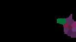 Logo den toom