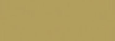 Logo spaghettata