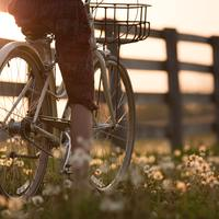 Thumbnail person riding bicycle near fence 1548771