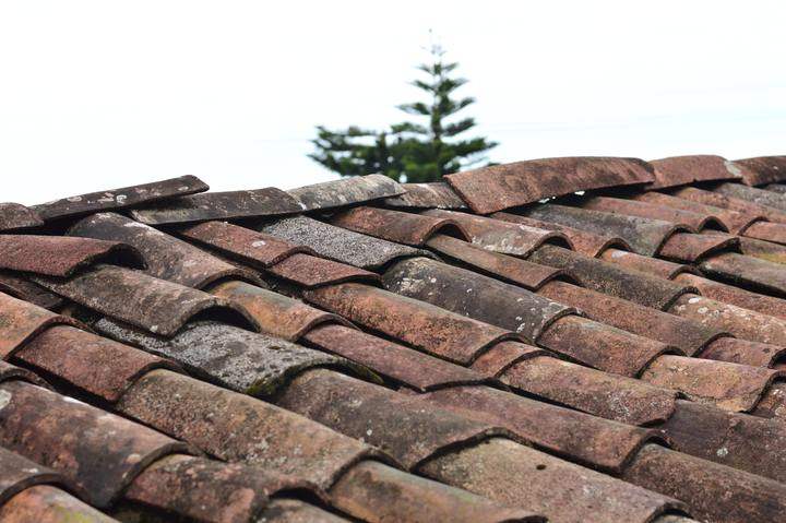 Normal selective focus photo of brown roof shingles 1453799