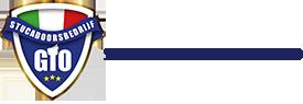 0 logo stucadoorsbedrijf gio