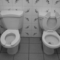 Thumbnail toilet